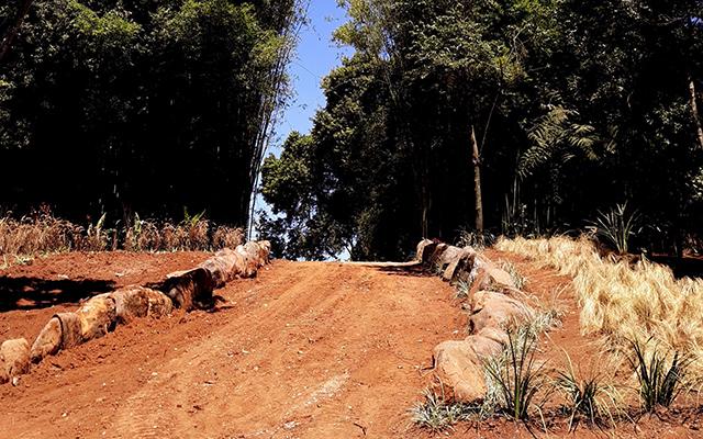 https://www.parqueanaua.com.br/wp-content/uploads/2020/06/conheca-ametista.jpg