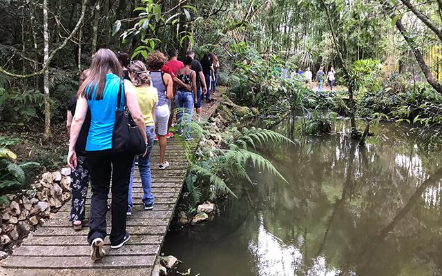 https://www.parqueanaua.com.br/wp-content/uploads/2020/06/conheca-caminhada.jpg