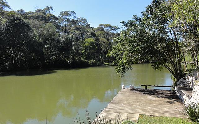 https://www.parqueanaua.com.br/wp-content/uploads/2020/06/conheca-vereda.jpg