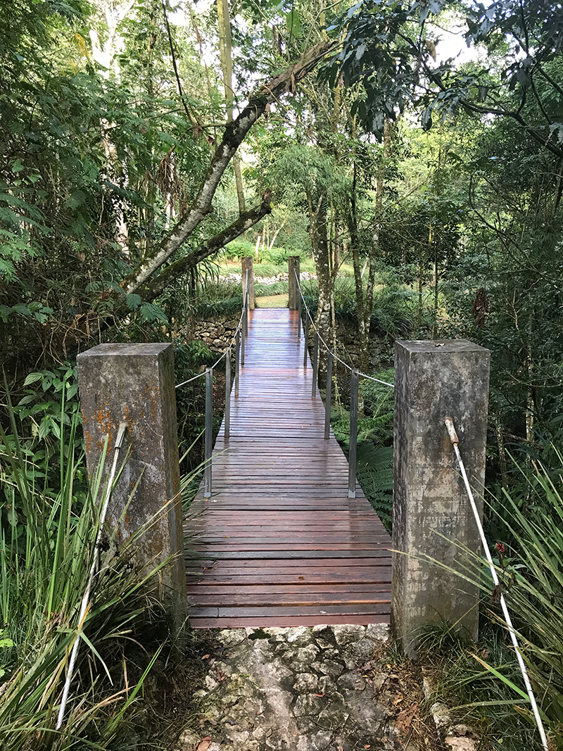 https://www.parqueanaua.com.br/wp-content/uploads/2020/06/img-agendar-visita.jpg